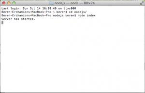 Node Server Started
