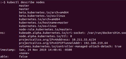 kubectl describe nodes
